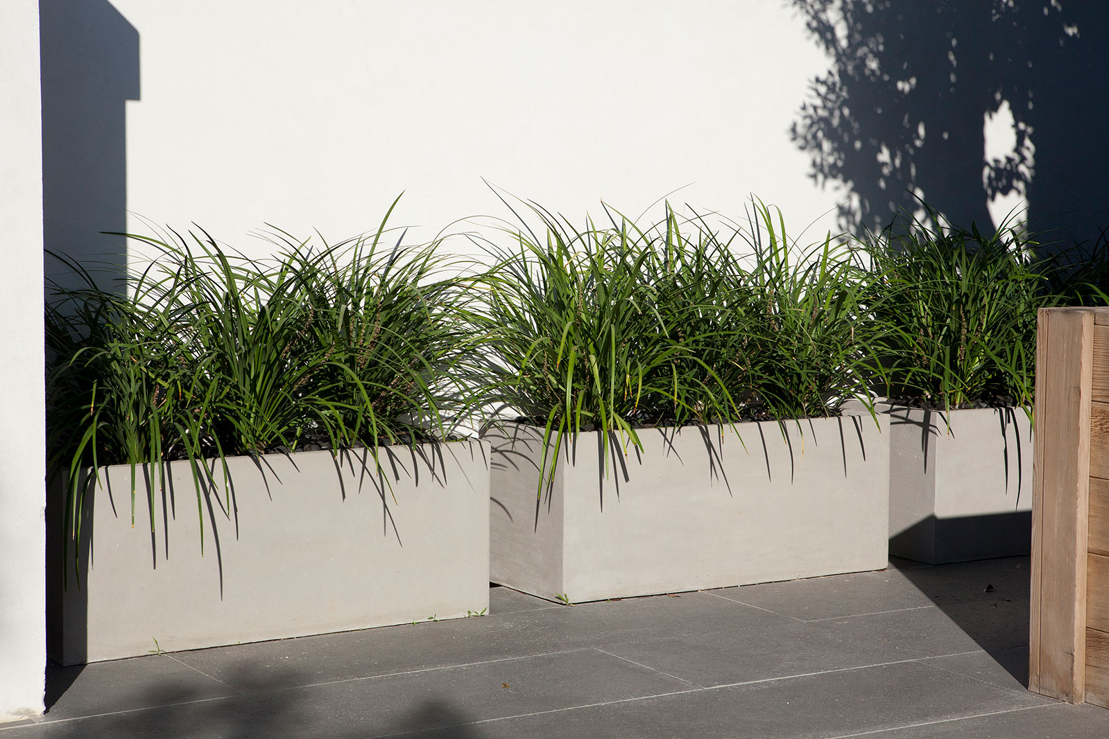 concrete planter by_BETONADA (15)